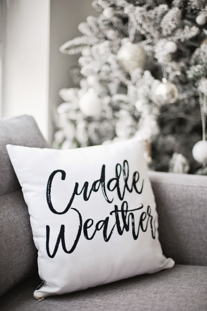 cuddle-weather-throw-pillow